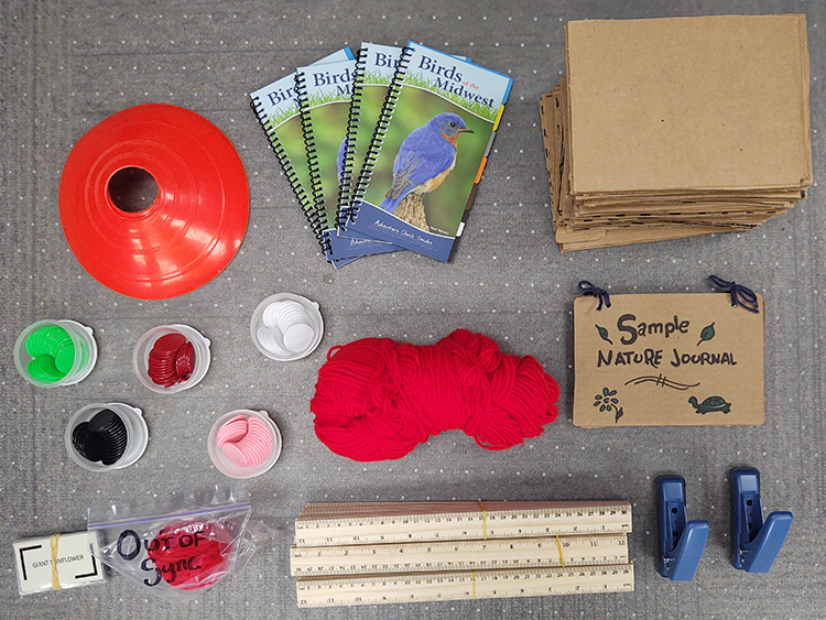 yarn, rulers, bird book and more phenology bin contents